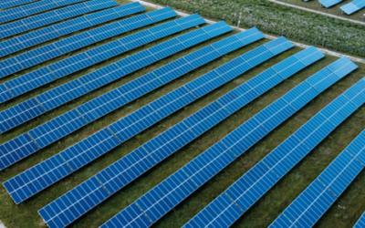[COMMUNIQUE DE PRESSE] Tenergie acquiert auprès de Marguerite Pantheon six centrales solaires d'une puissance de 72 MW